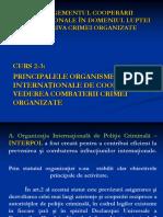 Curs 2 -3 - Princip.organisme Internat.de Coop.