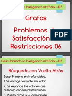 Video.107.Satisfaccion.restricciones.06