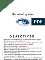 Visual system.pptx