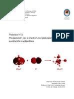 Informe Orgánica Sustitución.pdf