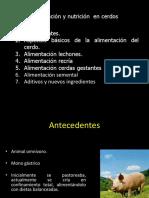 alimentacinencerdos-140615124213-phpapp01