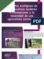 D Impactos Ecologicos Agric Convencional Mora