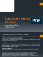 presentacionseguridadehiginieindustrial1-190620011426