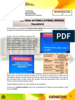5. Sistema Anterolateral Espinotalamico