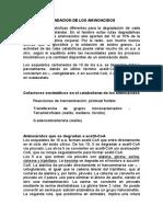 Degradación de Aminoácidos