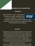 Patologia Bucal II Con Imagenes CICLO II