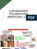 Leshmania Teg Americana