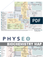 6-Biochemistry-map.pdf