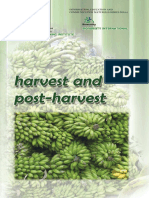 Harvest and Postharvest of Banana