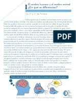 Human_and_Animal_Brains_How_do_they_compare_Grades_3-5_Spanish.pdf