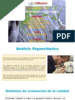 Análisis-Organoléptico.pptx