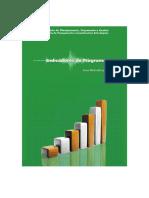 Indicadores de programa - guia metodológico