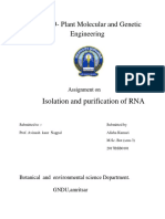 Isolation and Purification of RNA