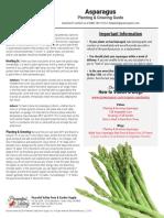 Asparagus Planting