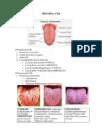 Lesi oral pdf