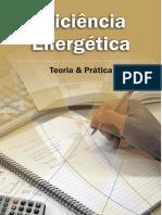 Eficiencia Energetica Teoria e Pratica