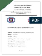 Practicas-Pre-Profesionales.docx