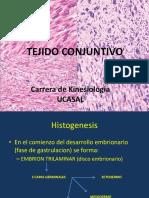 Histologia-Conectivo-UCASAL