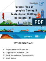 Working Plan Soil Investigation & Topography Survey