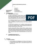 Problemas Del Aprendizaje Programa Upao Leandro Zelmira Correo (1)