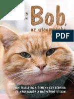 James Bowen - Bob Az Utcamacska