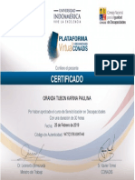 Certificado Karina