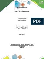 Fase 3 –Relacionar factores_Sandra Rodriguez_358014_4.docx