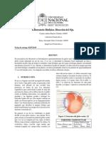 Informe 3 Biofísica. Disección Del Ojo