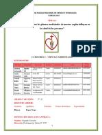 Estructura Informe Proyecto Ciencias