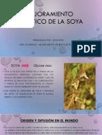 Mejoramiento Genetico de La Soya