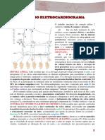 Bases Do Eletrocardiograma
