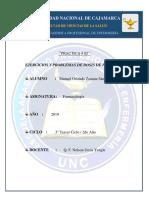 PRACTICA 02 2019.docx