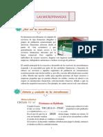 MICROFINANZAS HISTORIA Y EVOLUCIÓN.pdf