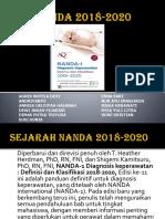 NANDA 2018-2020