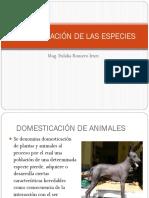 110945359-DOMESTICACION-DE-LAS-ESPECIES.pptx