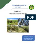 Monografia Agronomia Sistemas agroforestales