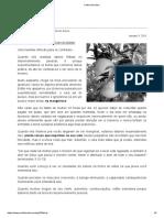 Colhendo frutos.pdf