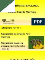 TALLER BIOTECNOLOGIA - Api m 1.pdf