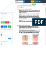 Cuestionario Cicatrización - Bases Científicas de La Medicina I - StuDocu