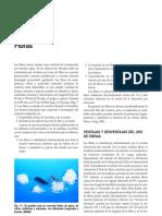 Pages From [Kosmatka - Diseño y Control de Mezclas de Concreto]