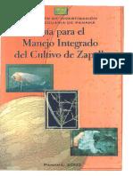 cultivodezapallo.pdf