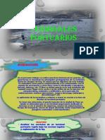 Expocicion Transportes Terminales Portuarios