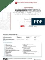 Camila Pinheiro Rodrigues_certificado