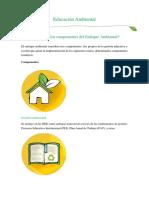 Componentes Del Enfoque Ambiental (1)