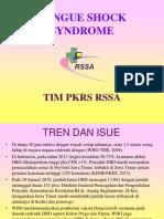 PPT DSS