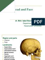 Head and Facies
