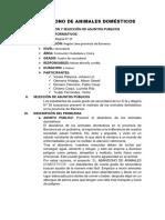EL ABANDONO DE ANIMALES DOMÉSTICOS.docx