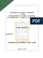 Ficha Ambiental Represa Sojta Pata