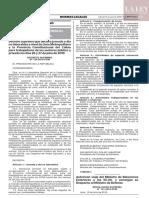 D.S.124-2019-PCM