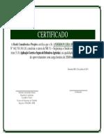 Certificado Nr 31